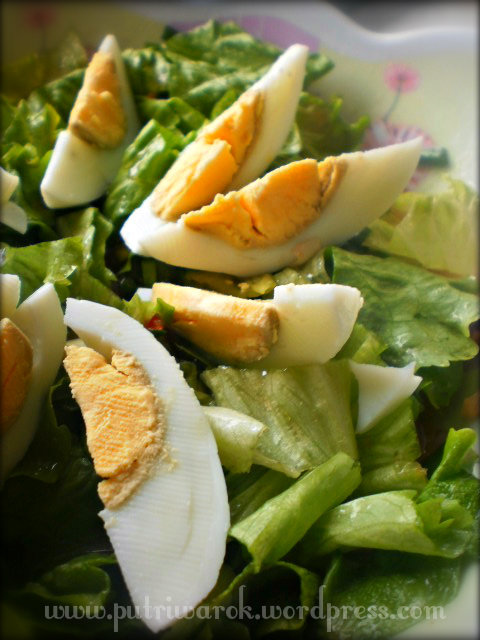 пролетна салата / Spring Salad / Salad Musim semi by nisa tsvetkova